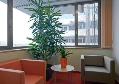 Office Garden szolgáltatások